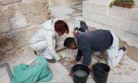Ein Mosaik aus Kunst und Menschlichkeit: Restauratoren von Trient bilden die Jungen des Mosaic Center