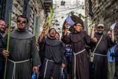 francescani palme