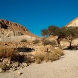 deserto_053
