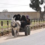 gaza-life_of_the_christians_16